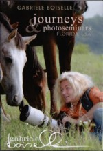 equestrian entertainment and documentary dvds. Black Bedroom Furniture Sets. Home Design Ideas